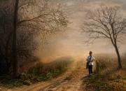 Chemin et brume