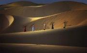 Dunes et filets