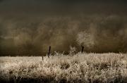 09_Matin blanc
