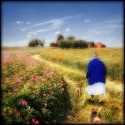 Walk_back
