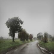 13 - La route triste
