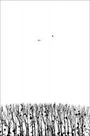 03_Battement d'ailes