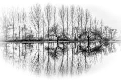 11-Cédric_Geyer_Réflexion