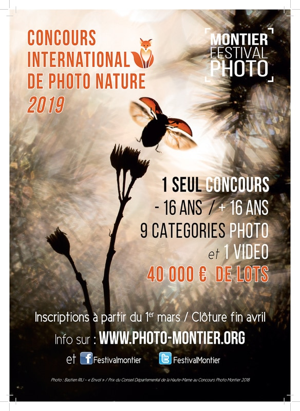 MONTIER_FPF_insertion_concours_2019