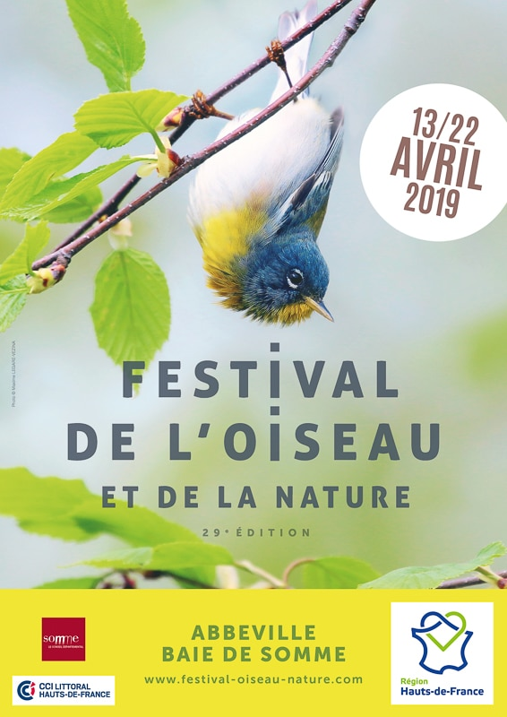 Festival_2019_vertical.jpg