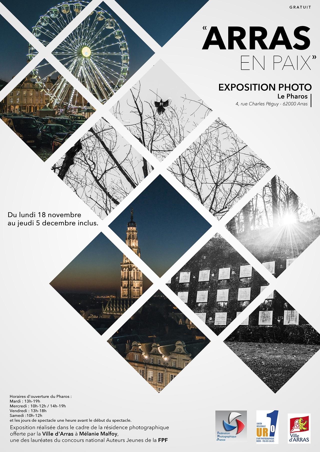 Affiche_expo_Mélanie_Arras_Pharos