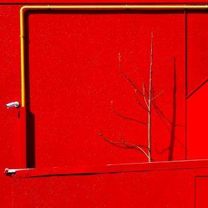 Bernardon Claude - Sur fond rouge